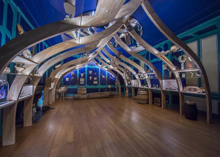 Visite Libre Du Musée Et Du Cabinet De Curiosités à Cuisery