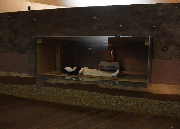 Visite Libre Du Parc Archéologique Européen à Bliesbruck
