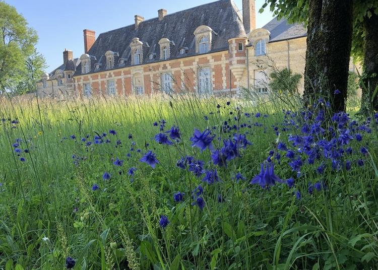 Visite Libre Du Parc Du Château Du Tertre à Serigny