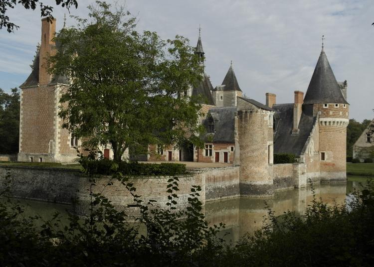 Visite Libre Du Parc Et Du Conservatoire De La Fraise Du Château Du Moulin à Lassay sur Croisne