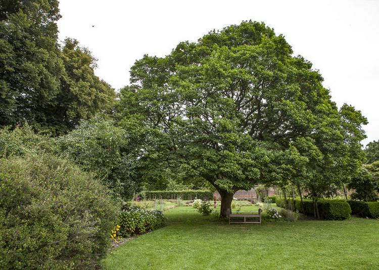Visite Libre Du Parc Et Jardin De Bosmelet à Auffay