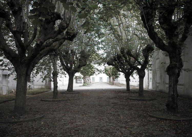 Visite Libre Du Parc Paysager - Site De L'epsm Etienne Gourmelen à Quimper