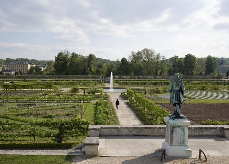 Visite Libre Du Potager Du Roi à Versailles