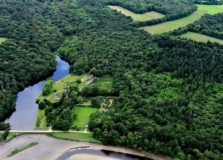 Visite Libre Du Site Abbatial De Saint-maurice. à Clohars Carnoet