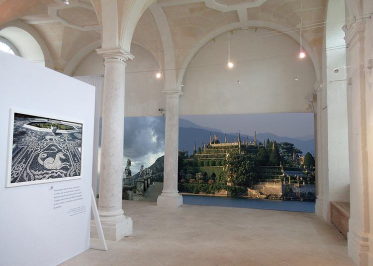 Visite Libre Du Site Et Des Expositions Temporaires à Saint Martin de Boscherville