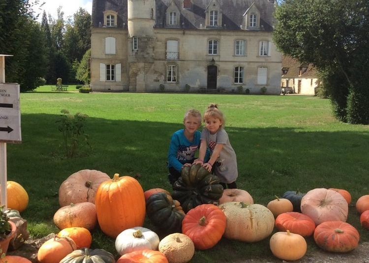Visite Libre En Présence Des Jardiniers à Breuil le Sec