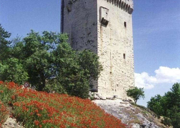 Visite Libre Et Exposition Bleu Lagon à Villeneuve les Avignon