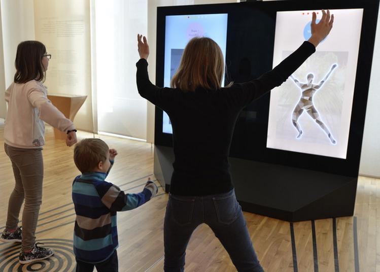 Visite Libre Et Gratuite De La Galerie De L'homme à Paris 16ème