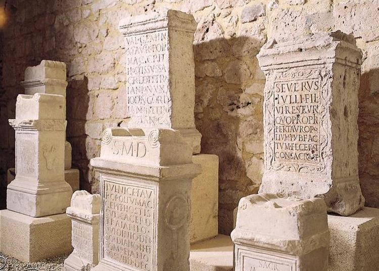 Visite Libre Et Gratuite Des Collections Du Musée Archéologique à Lectoure