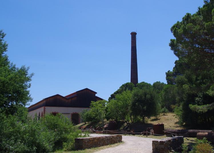 Visite Libre Et Promenade-découverte Dans Le Site à Port Vendres