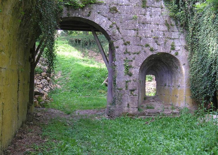 Visite Libre Ou Commentée Sur Le Site De La Mothe à Soulaucourt sur Mouzon