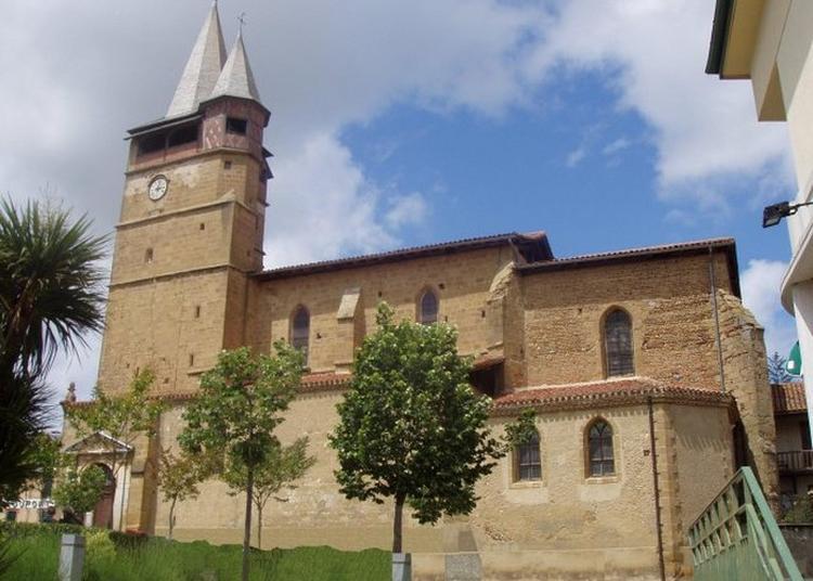 Visite Libre Ou Guidée De L'église Collégiale à Castelnau Magnoac