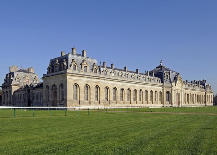 Visite Nocturne Des Grandes Ecuries à Chantilly
