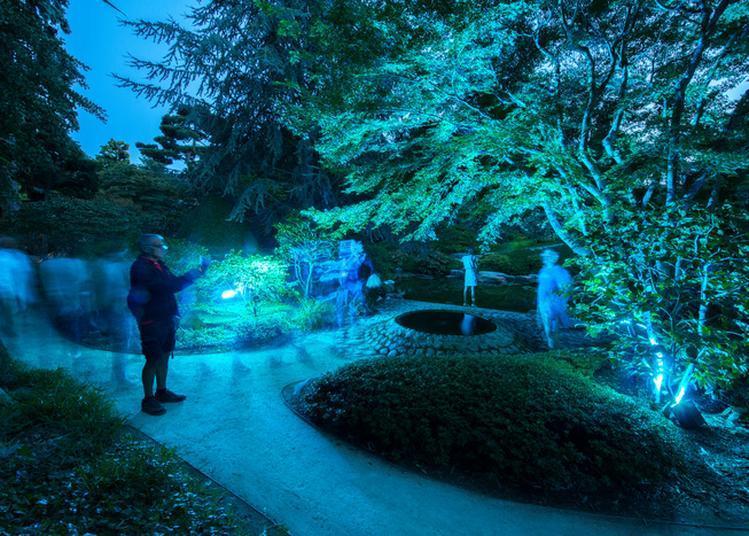 Visite Poético-décalée à La Lampe Torche à Boulogne Billancourt
