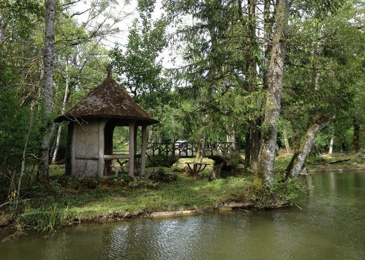 Visite Pour Les Scolaires Du Parc Du Domaine De Lavaux à Lafauche
