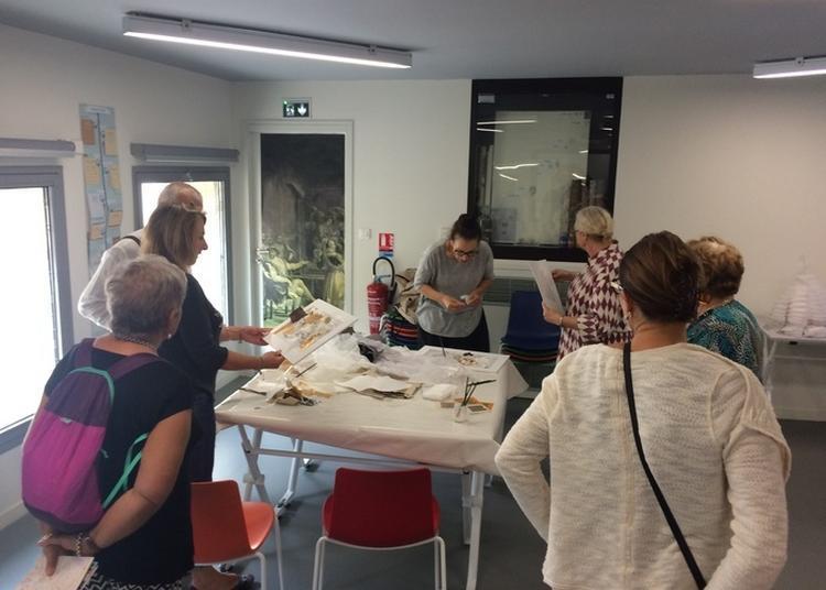 Visite Sensorielle De La Bibliothèque De Louis Médard à Lunel