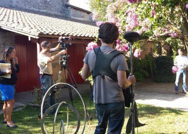 Visite Thématique : Histoires De Cinéma à Saint Emilion