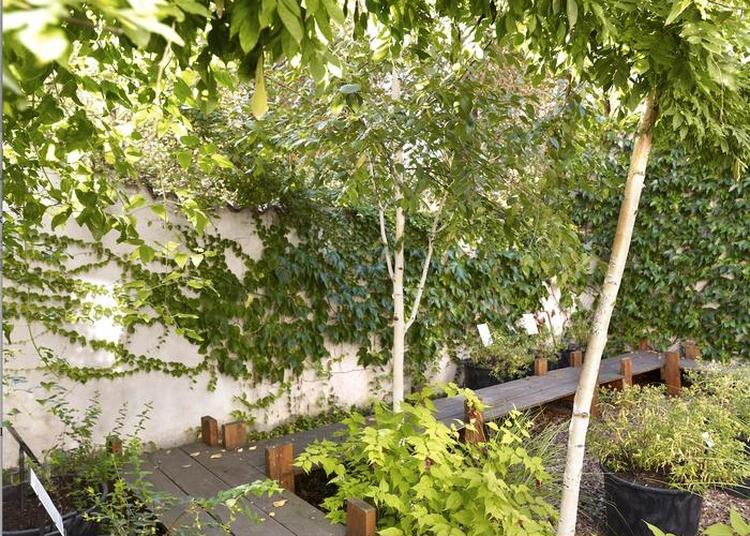 Visite - Un Jardin Pluriel à Metz
