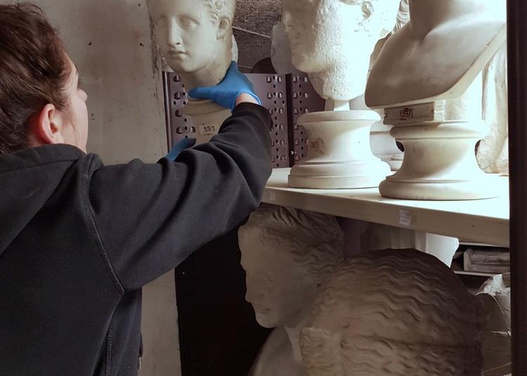 Visiter Les Réserves : Coulisse Du Chantier Des Collections à Lyon