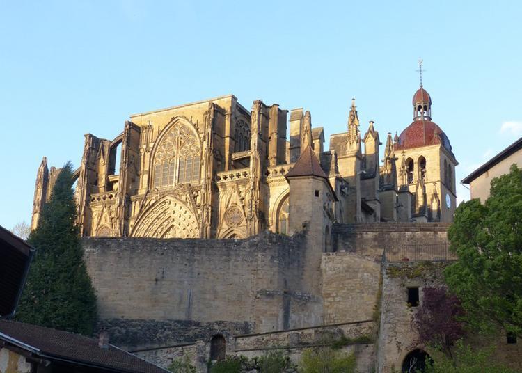 Visites Commentées À Thème Autour Du Site Historique à Saint Antoine l'Abbaye