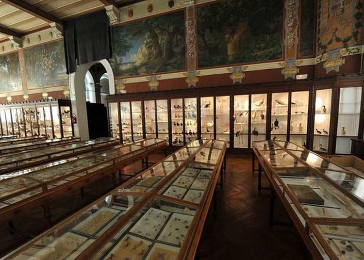 Visites Commentées De La Salle De Provence à Marseille