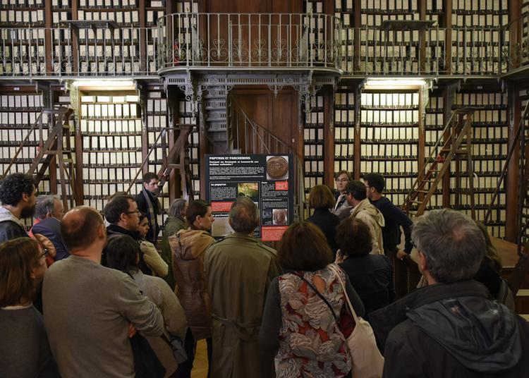 Visites-conférences Des Grands Dépôts Des Archives Nationales à Paris 4ème