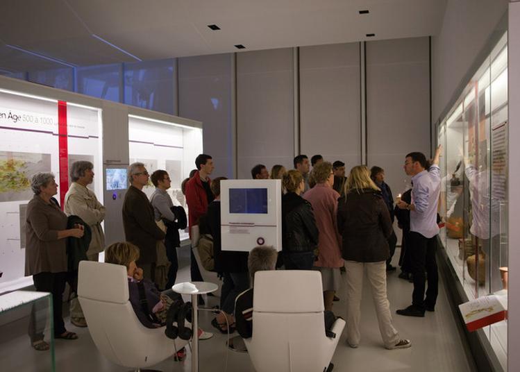 Visites De L'exposition Permanente D'archéa à Louvres