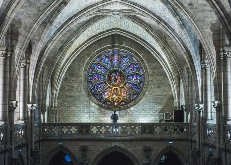 Visites Du Cloître Et De La Chapelle Néogothique De L'ancien Séminaire De Bordeaux
