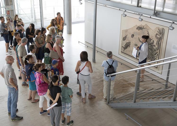 Visites Du Musée à Saint Romain en Gal