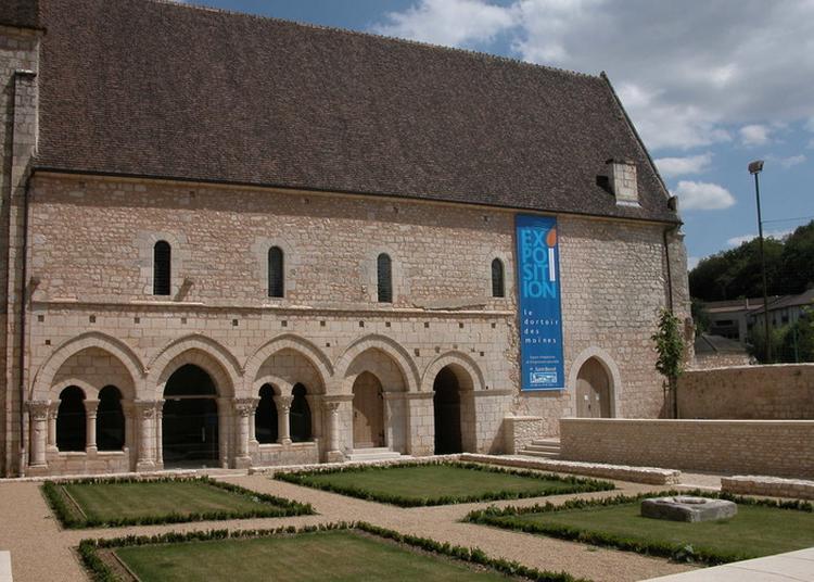 Visites Du Site Abbatial De Saint-benoît. à Saint Benoit