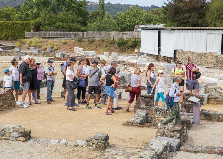 Visites Du Site Archéologique à Saint Romain en Gal