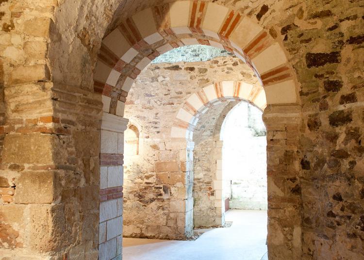 Visites Du Site De L'abbatiale à Saint Philbert de Grand Lieu