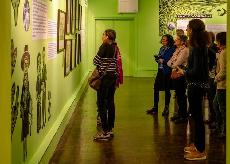Visites-express De L'exposition Bois Brésil à Brest