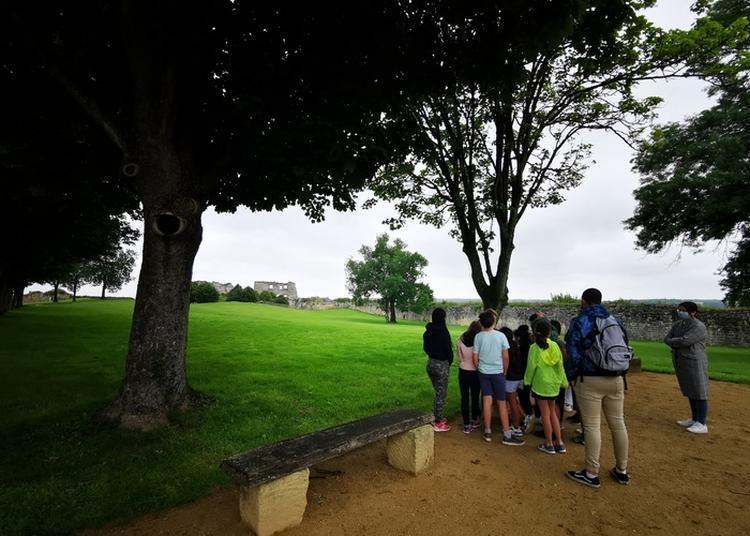 Visites Flash Au Château De Coucy à Coucy le Chateau Auffrique