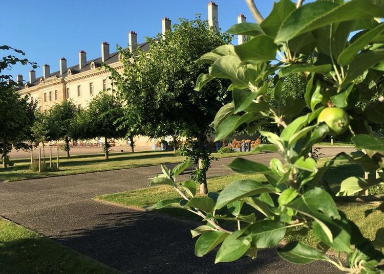 Visites Flash Du Jardin à Licorne à Moulins