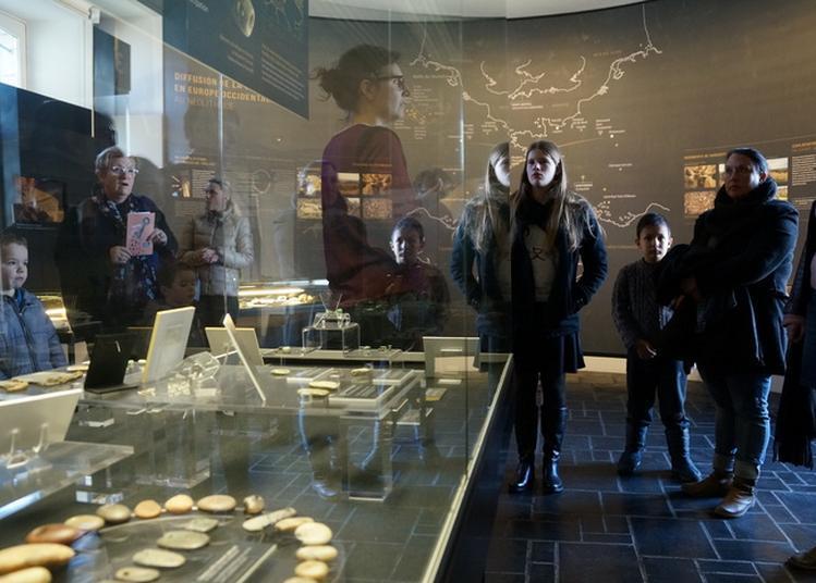 Visites Flash Sur Le Néolithique Et Le Mégalithisme à Carnac