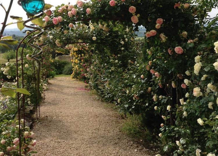 Journ es du patrimoine roiffieux 2017 for Culture des jardins