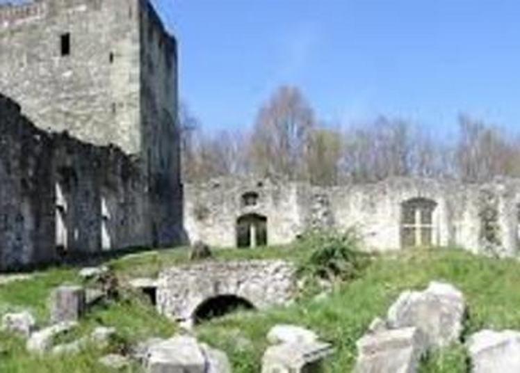 Visites Guidées : Château Thomas II de Savoie à Le Bourget du Lac