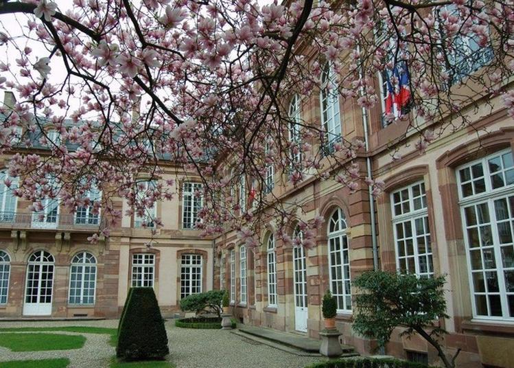 Visites Guidées Au Palais Gayot à Strasbourg du 15