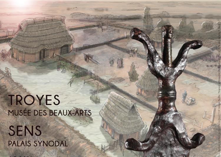 Les Sénons. Archéologie et Histoire d'un peuple gaulois à Troyes