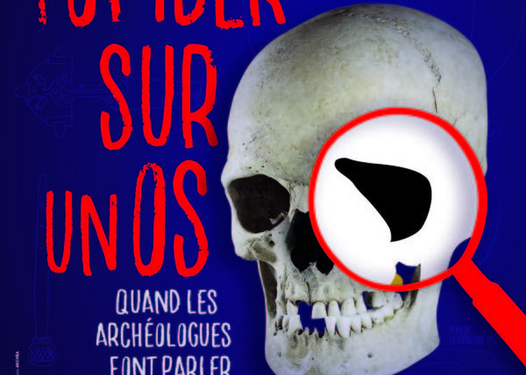 Visites Guidées De L'exposition Tomber Sur Un Os, Quand Les Archéologues Font Parler Les Morts à Louvres