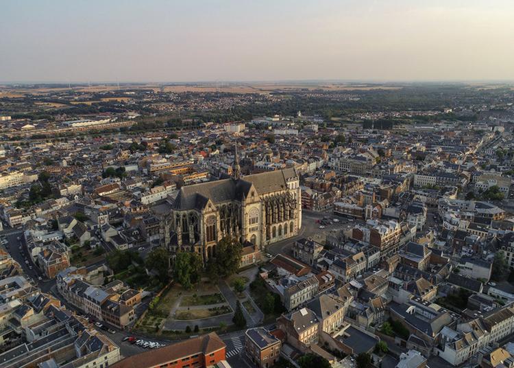 Visites Guidées De La Basilique à Saint Quentin