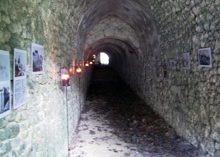 Visites Guidées Des Anciens Remparts à Reims