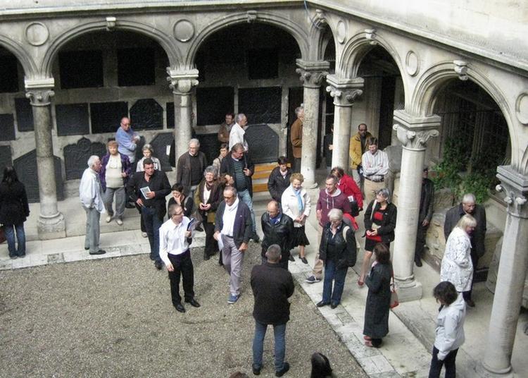 Visites Guidées Des Collections Et De L'exposition Attel De Luttange à Verdun