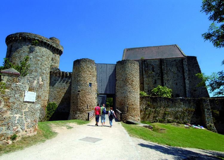 Visites Guidées Du Château De La Madeleine à Chevreuse