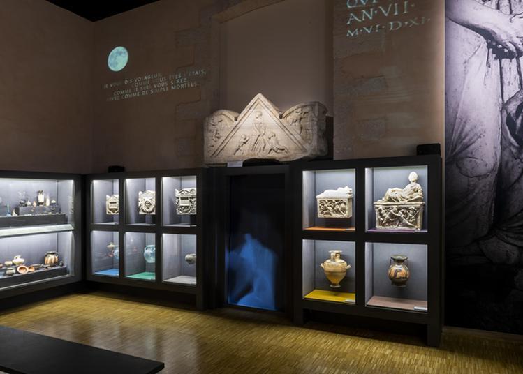 Visites Libres Des Collections Du Musée D'archéologie Méditerranéenne à Marseille