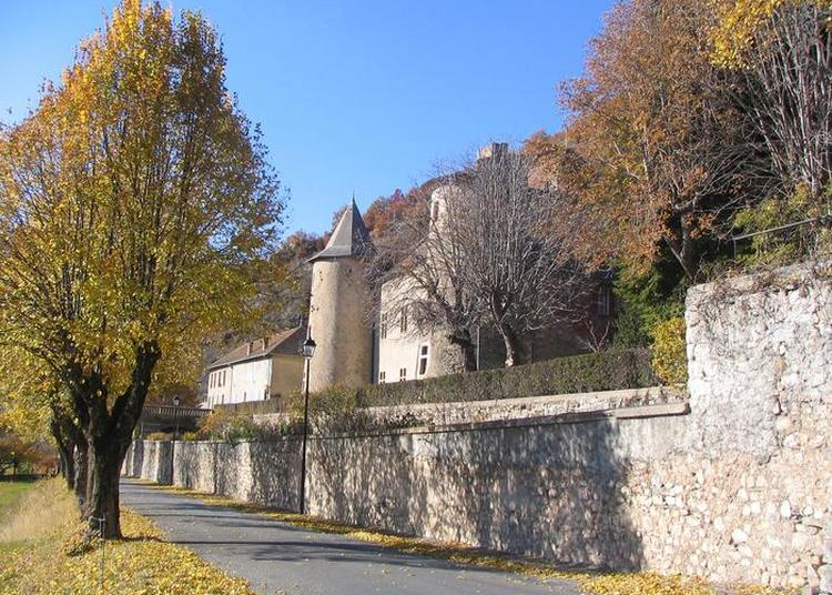 Visites Libres Du Château De Montmaur