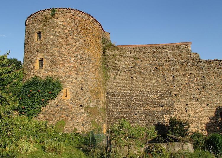 Visites Libres Et Guidées Du Château à Sain Bel