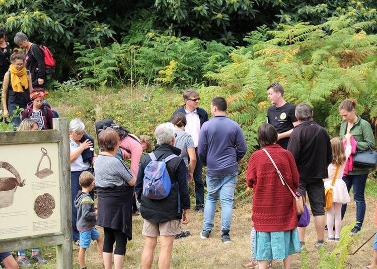 Visites Libres Ou Guidées Du Camp De Péran à Pledran