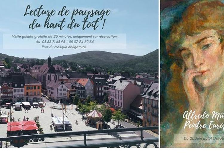 Visites Sur Le Toit Du Château à Saverne